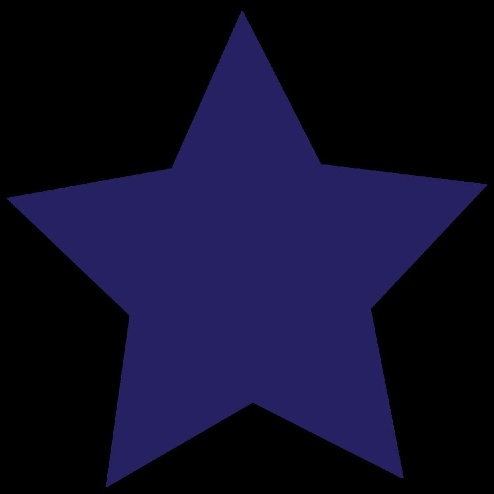 territhao-branding_star-blue.png