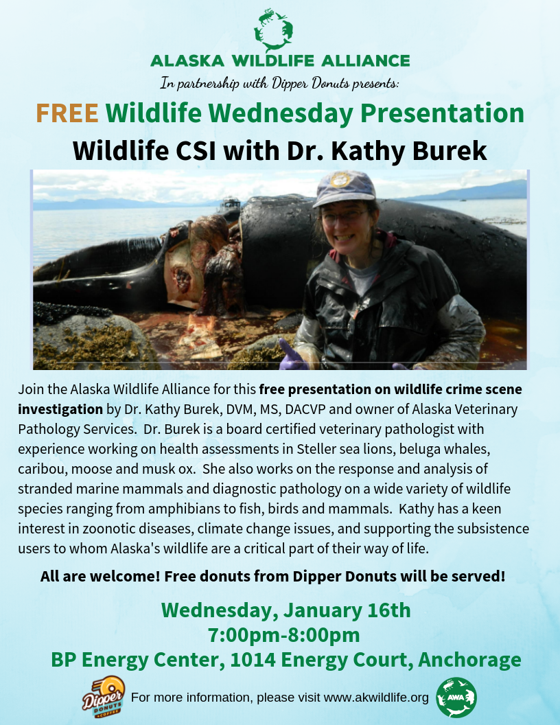 burek wildlife wednesday anchorage wildlife crime scene investigation CSI