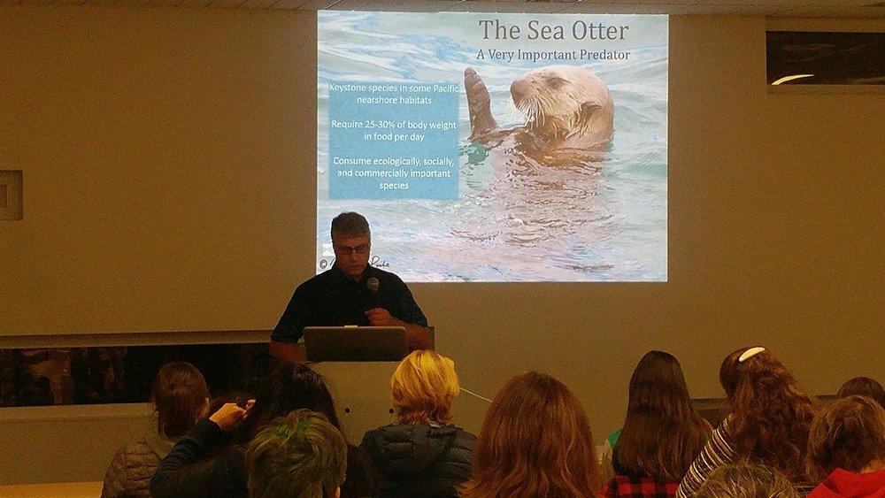 Wildlife Wednesday Otters 2.jpg