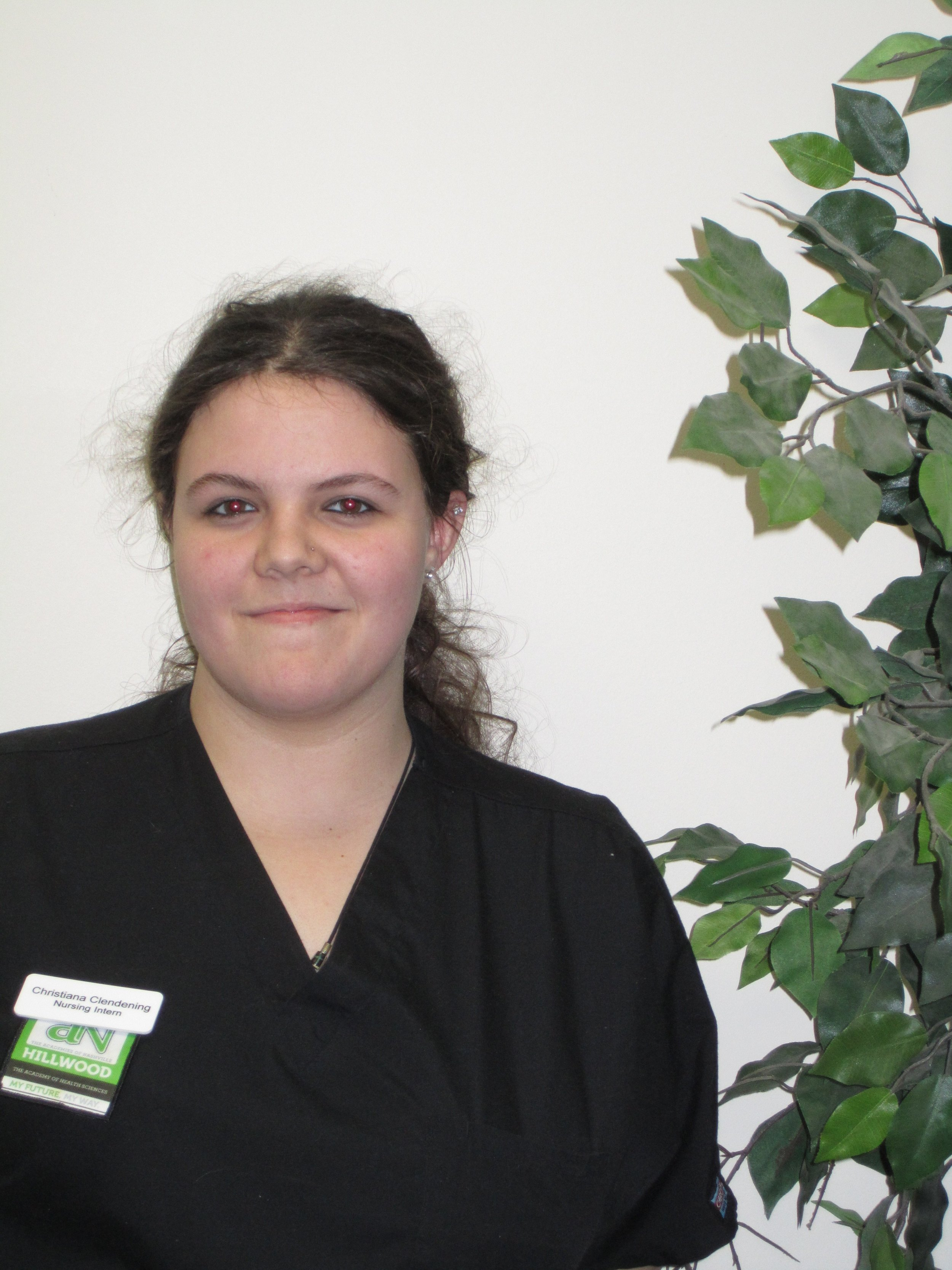 Hillwood Academies Nashville nurse training