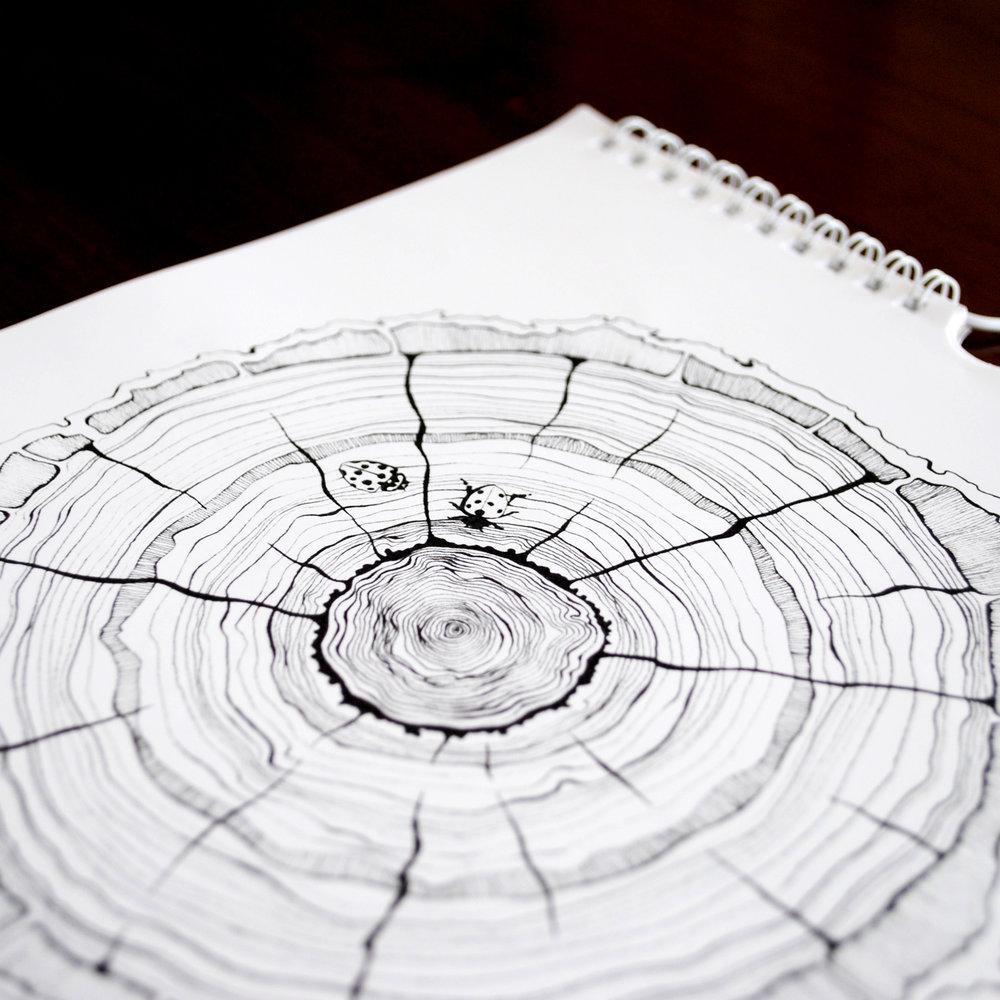 DrawingDetails_2.jpg
