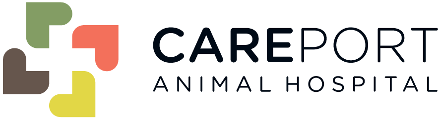 Careport Animal Hospital | Veterinary Clinic in Regina, SK