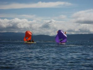 Sea Kayak Tour Sailing