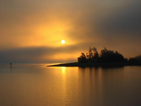 Foggy Morning Sunrise.jpg