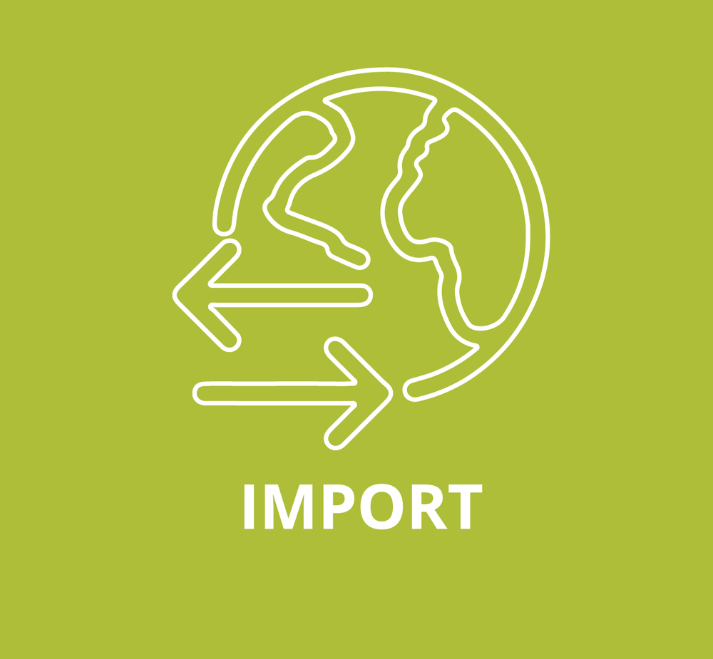 Import Graphic-01.png