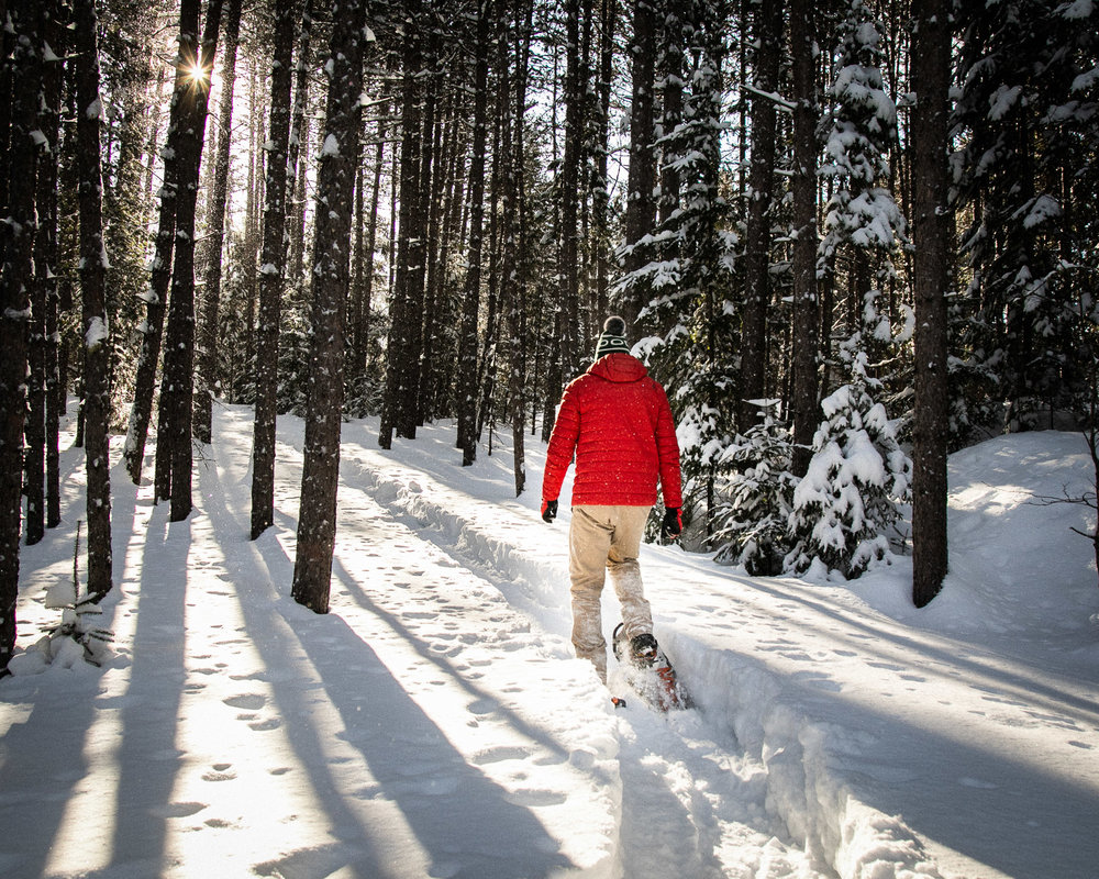 Winter in Algonquin Park: An Outdoor Adventurer Tries It All - Click on image to read at Explorers' Edge