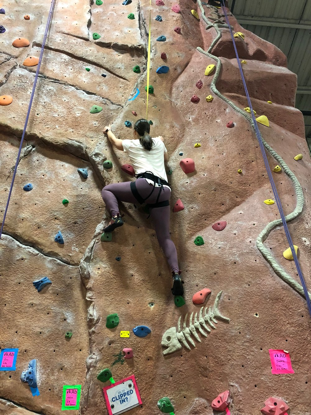 Theresa climbing.jpg