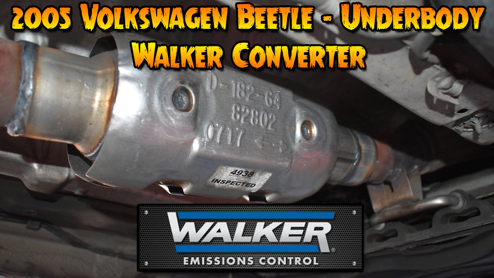 beetle-walker.jpg
