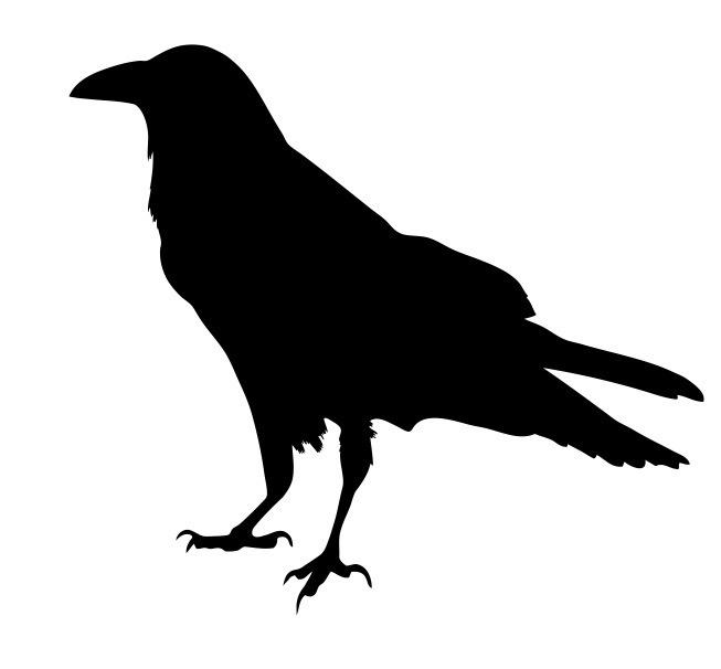 noun_Raven_683810.jpg