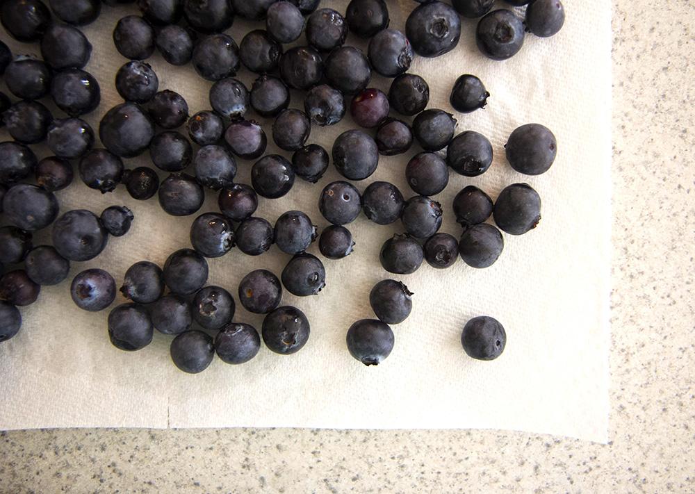 Blueberry_Tart20160205_00web