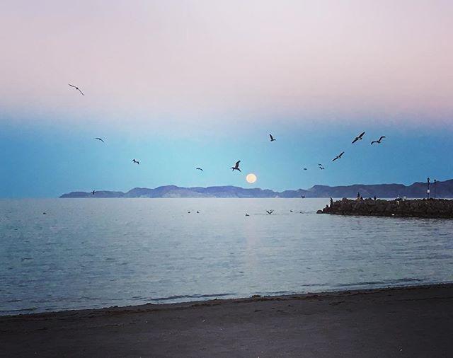 Good night.! Loreto B.C.S 🌚💫 #bajacalifornia #loretomagico #bajacaliforniasur #travelmexico #nationalgeographic #loretobcs #loretobay
