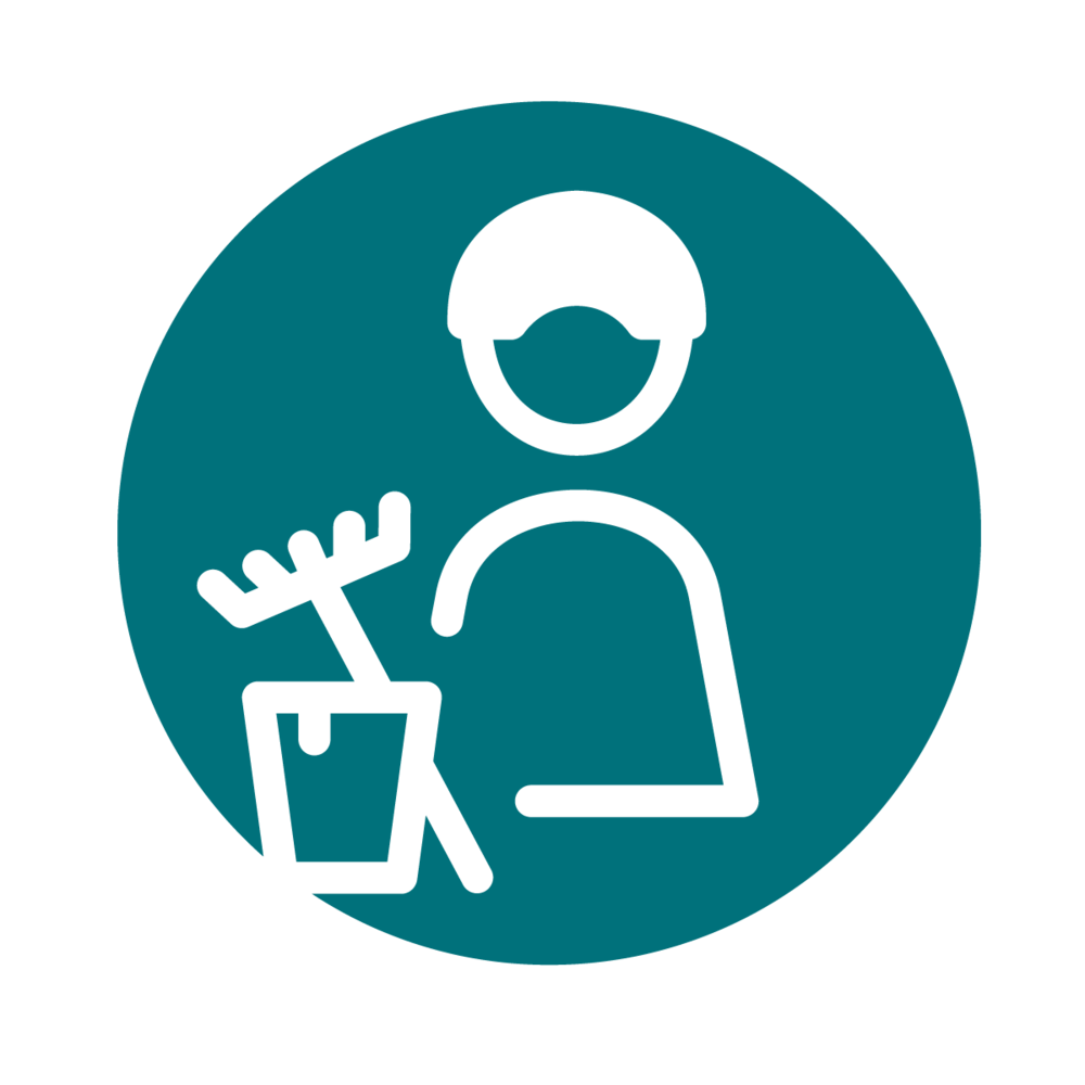 hauswärts-icon-haushaltshilfe.png