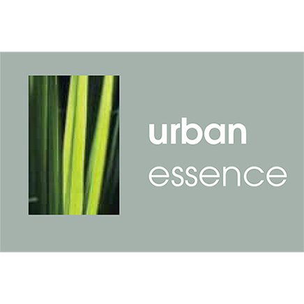 Urban Essence