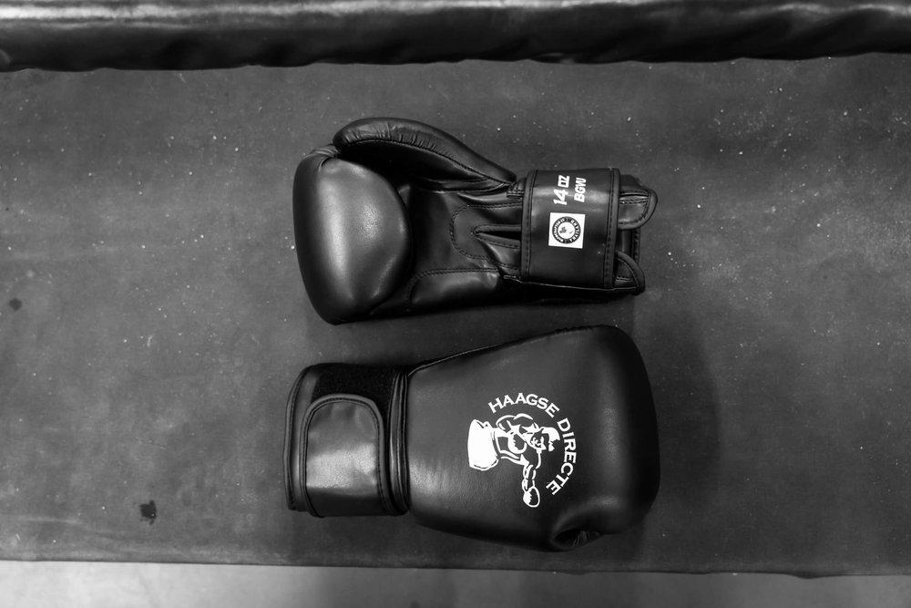 Eigenmerk€ 45,- - Ideaal om als eerste paar bokshandschoenen te hebben! Goed geschikt voor de trainingen.