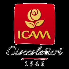 iCam.png