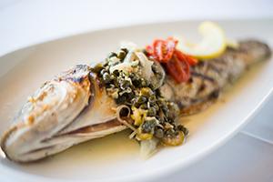 bronzinofish.jpg