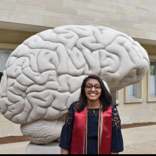 Sonali Mali - Sonali studied Neuroscience at IU and researched in the lab during her undergraduate career. She graduated in May and is now pursuing graduate studies at Helen Wills Neuroscience Institute at UC Berkeley.