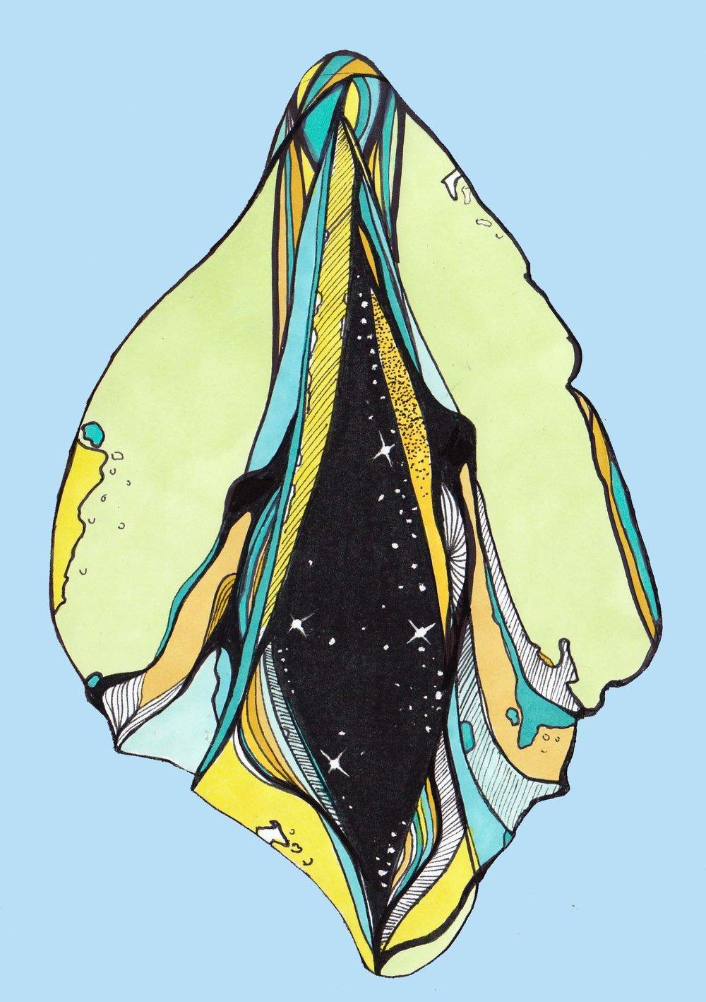 Vulva 20.jpg