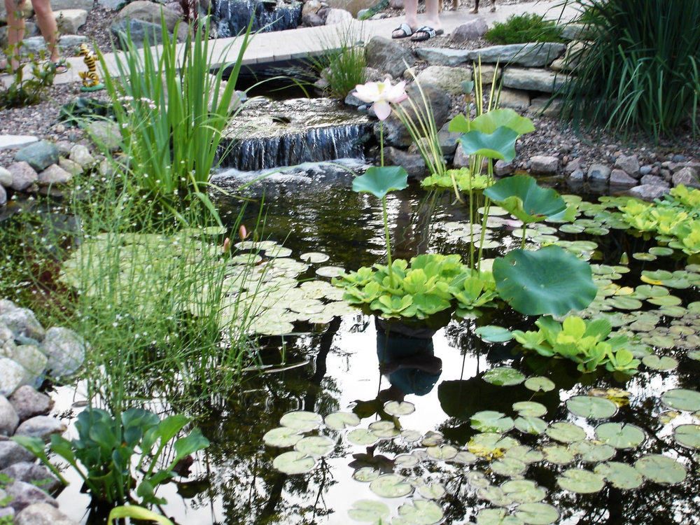 Madison WI landscaper with beautiful water features