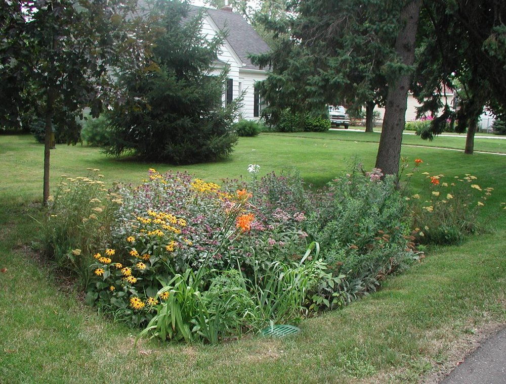 A rain garden can be a simple presentation used for only rain water harvesting