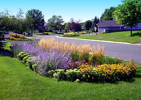 A simple but colorful rain garden can set off your home or other landscape ideas you may have