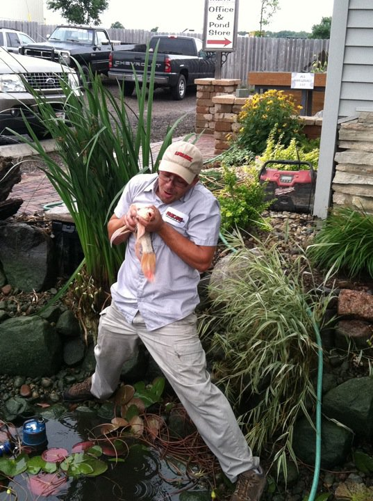 Fish pond landscaper in Madison WI