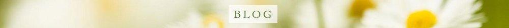 blog band.JPG