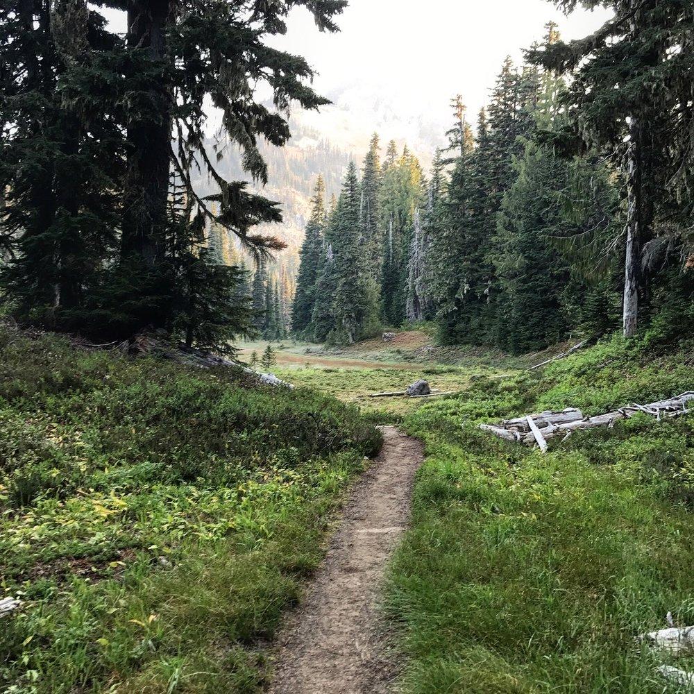 wonderland-trail-1.jpeg
