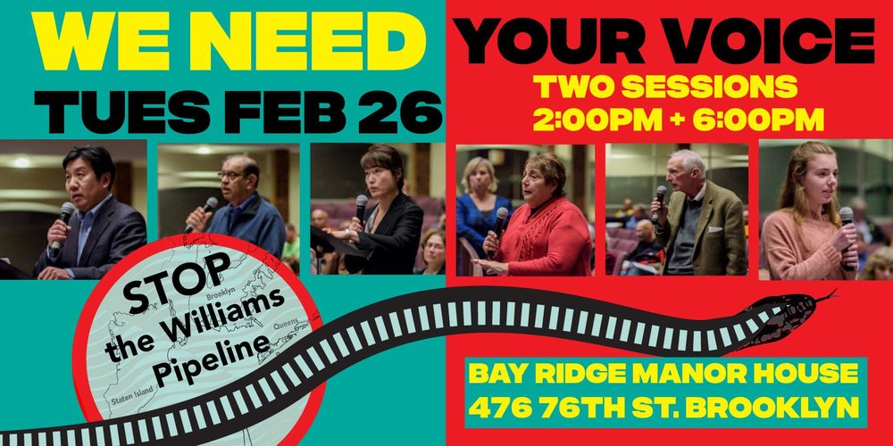FebRUARY 26: It's time to testify! - DEC Public Hearings on the Williams NESE PipelineWe need all hands on deck at these public hearings Come out and raise your voice against this dangerous, unneeded, climate-wrecking project and help us stop it for good. We'll provide suggested talking points.Click here to: RSVP and get MORE INFO