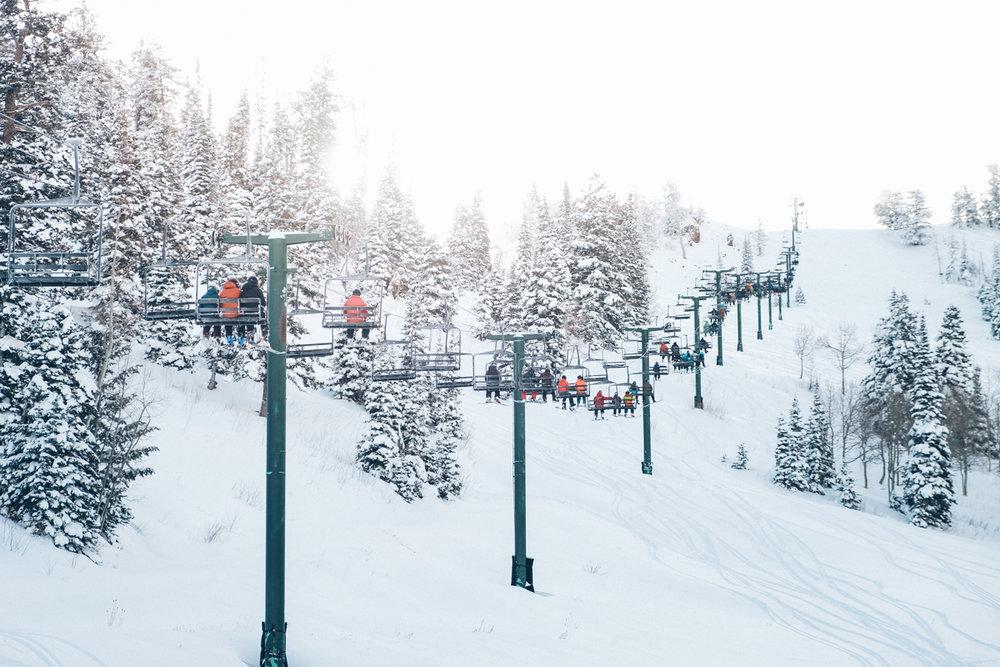 Skiing & Snowboarding -