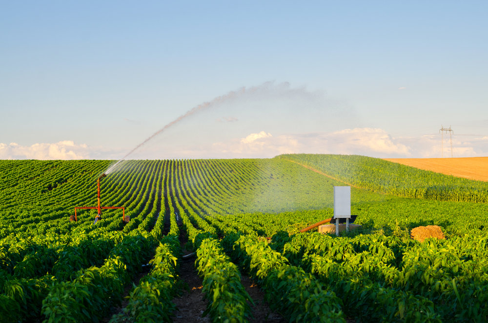 Drainage and Irrigation Systems for Malawi