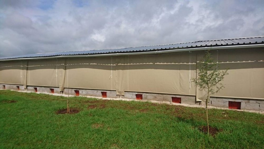 Chicken House PVC Curtains Malawi