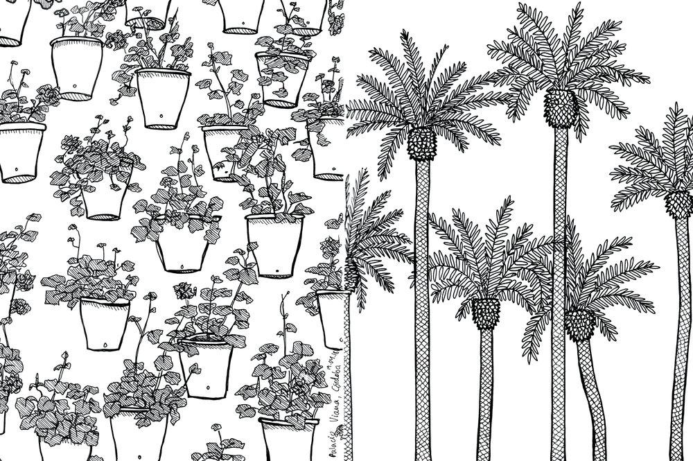 7_cordoba_pots_palmtrees_web.jpg