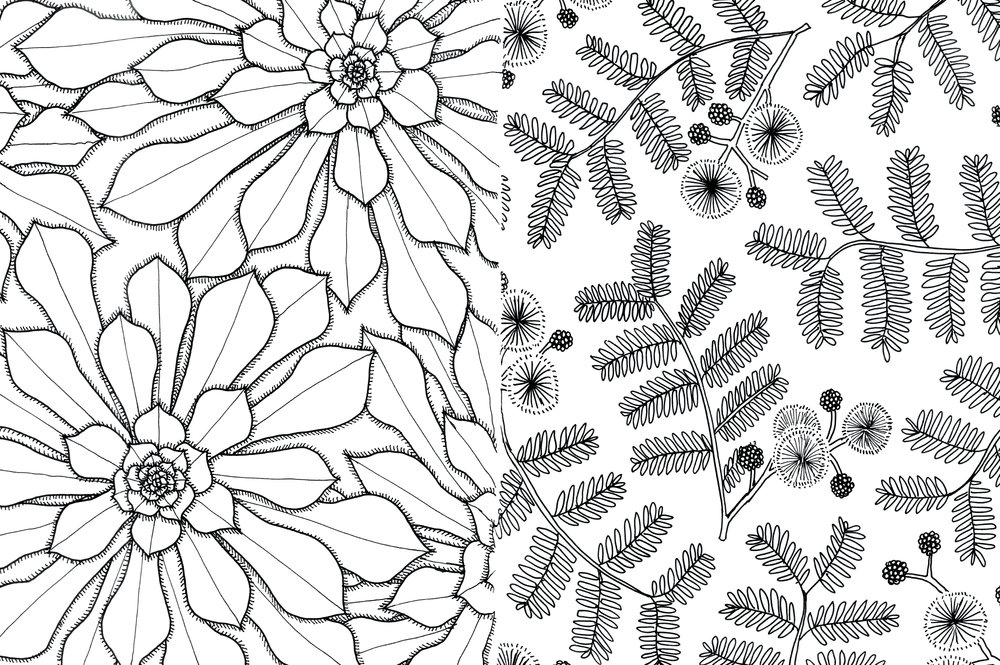10_cordoba_botanical-gardens_web.jpg