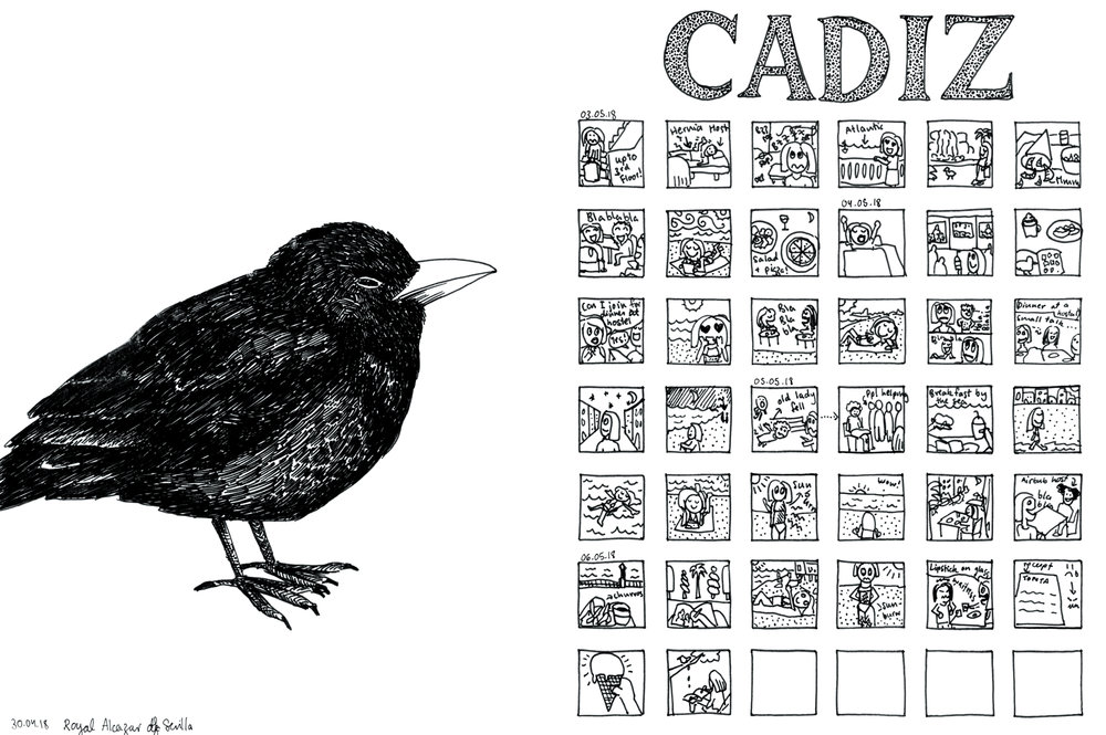 18_sevilla_cadiz_bird_comic_web.jpg