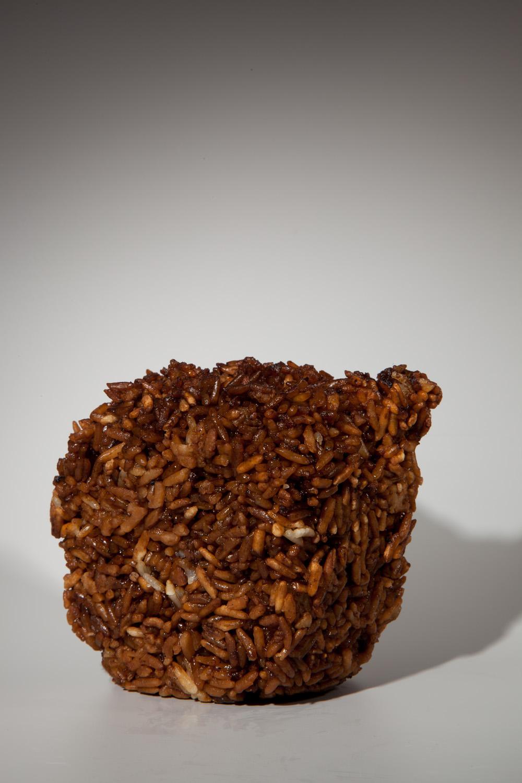 "Duck Sauce Fried Rice, 10""x15"", Archival Inkjet Print, 2011.  鴨醬炒飯,25x38公分,無酸微噴藝術紙,2011。"