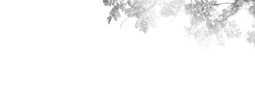 Sol_014_Aura004-R.jpg