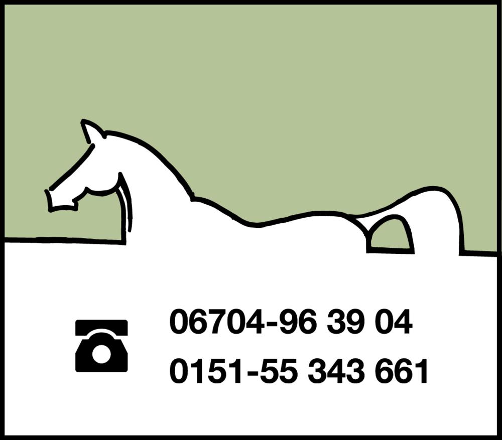 Pferd_Bild3.png