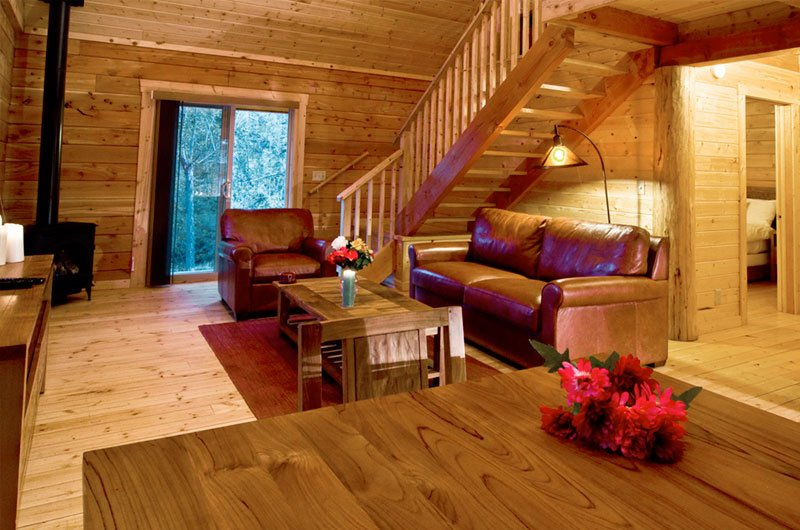 cabin-livingroom_0.jpg