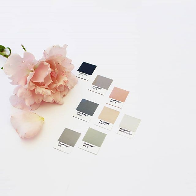 A classy colour palette for a remarkable architectural design business in Oakville, Ontario. / Alison has a very keen eye for detail and an understandable love of all things linear. After an initial chat over Skype, we knew we were the perfect fit for each other and that's where our brand design journey began. / Calm, natural, peaceful, spacious, intricate, bespoke, light and graceful. With a clear brief and solid brand values established, selecting a colour palette came very naturally. / Before investing in design, Alison put in a lot of work upfront to understand the impression she wanted her new branding to convey, and to get to the very heart of her values - those key words and aspects that sum up why you're so brilliant at what you do. It pays dividends to do this. You'll have clarity, focus and 100% confidence that your brand message is clear, then it's in your designer's hands to translate that into intelligent design. / How do these colours make you feel?