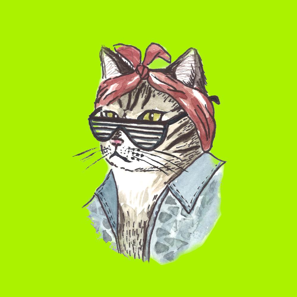 cat_ratchet.jpg