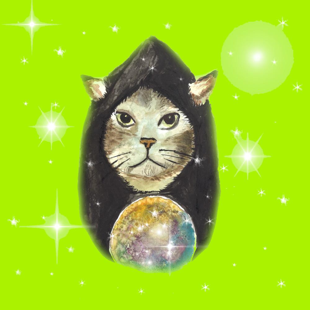 cat_wizard.jpg