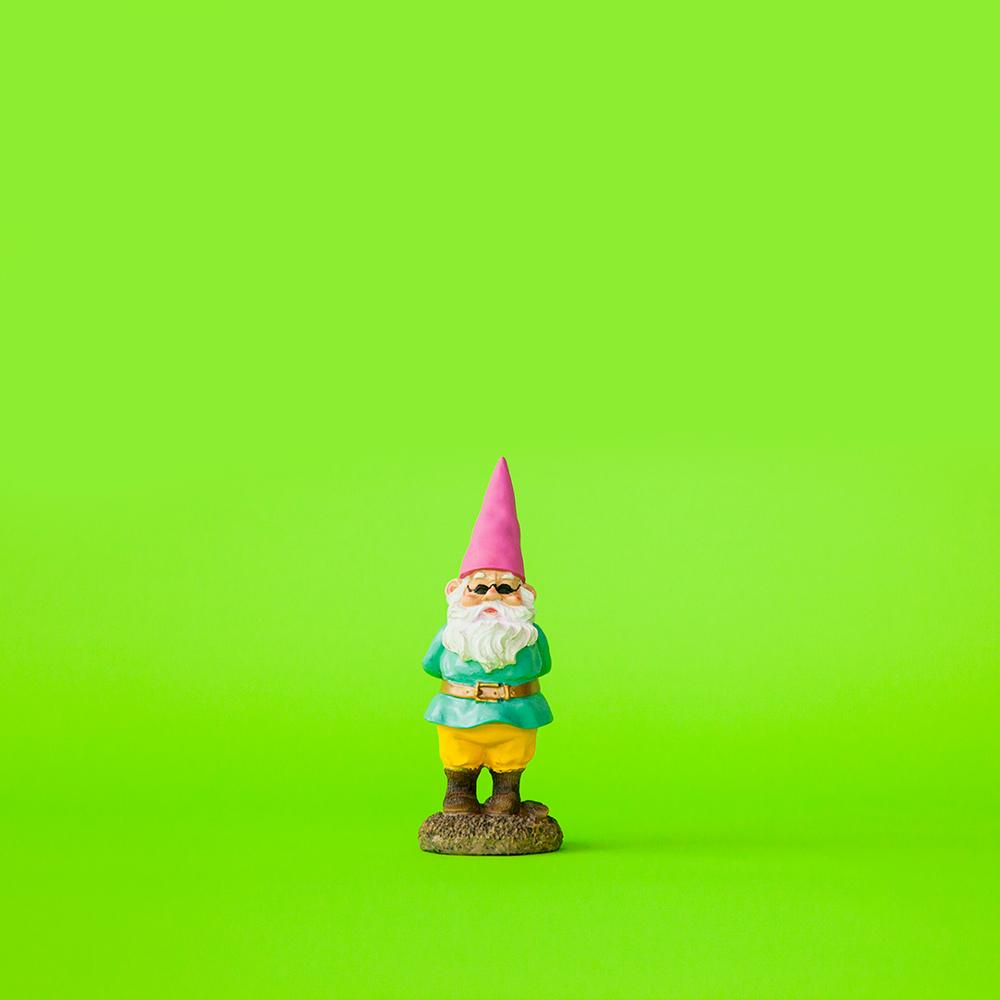 Gnome_Bro.png