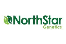 northstar-logo.jpg