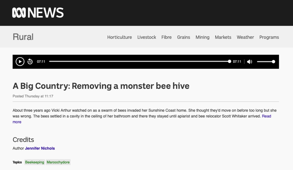 A Big Country: Removing a monster bee hive  Author Jennifer Nichols