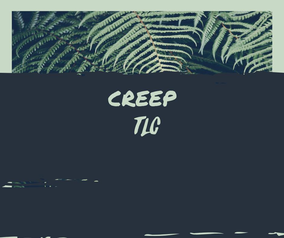 Creep - TLC