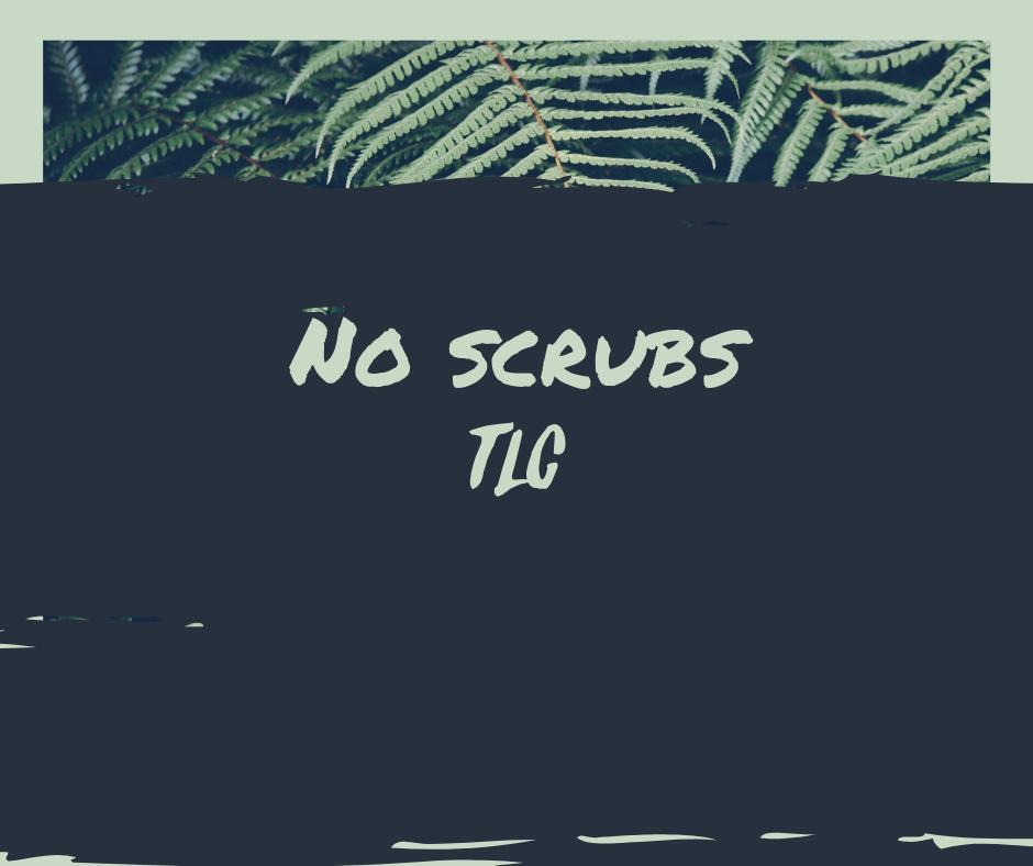 No Scrubs - TLC