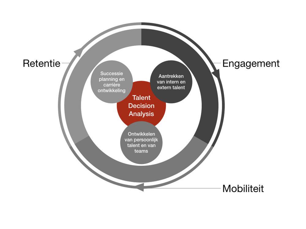De talent levenscyclus - Vanaf het nadenken over de behoefte aan talent tot en met het behoud en de ontwikkeling van intern en/of extern talent.