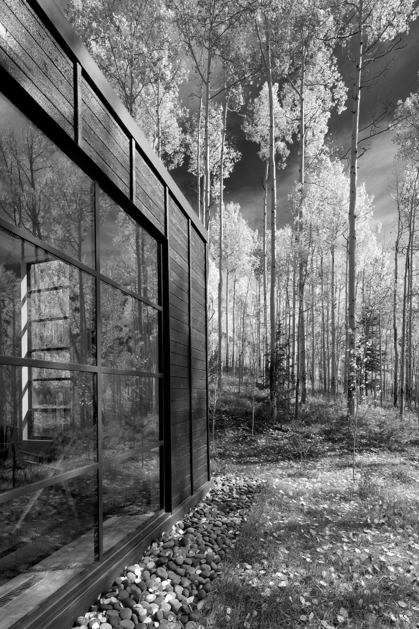 Exterior details reference the immense verticality of the aspen trees / Photo by Greg Watts