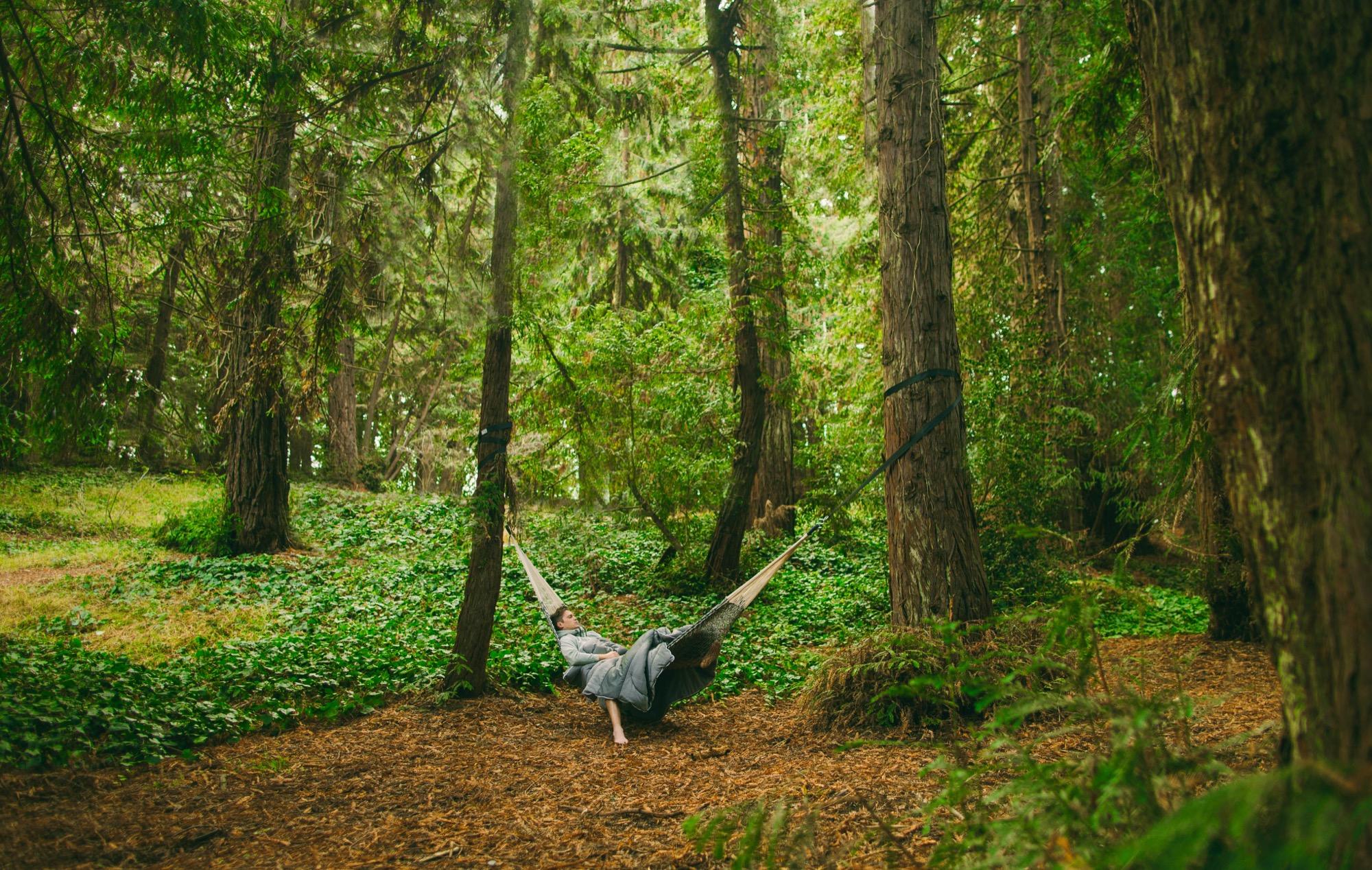 Rumpling in the woods / Photo by John Asuncion